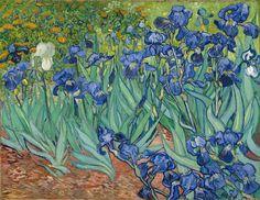 Le château d'Auvers présente un parcours sur les impressionnistes et nous plonge dans l'ambiance de l'époque. Un joli parc et ses parterres d'iris comme ceux que Van Gogh peignait entourent le château. http://radisrose.fr/cake-myrtille-citron-amande-bleu-comme-les-iris-van-gogh/ #iris #auverssuroise #auvers