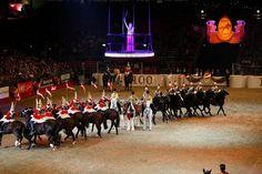 The London International Horse Show Olympia Olympia Horse Show, British Monarchy, Show Horses, Equestrian, Castle, London, Horseback Riding, Castles, Show Jumping