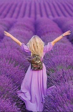 For the L<3VE of lavender. - Lavender field in Provence, France. - Purple