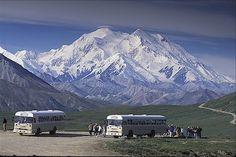 Denali National Park- Alaska
