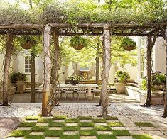 Pergolas Vines And Building On Pinterest