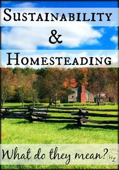 Sustainability and Homesteading l What their definitions mean to you and me l Homestead Lady (.com) - Can you really homestead sustainably wherever you are - How can you learn those old skills?