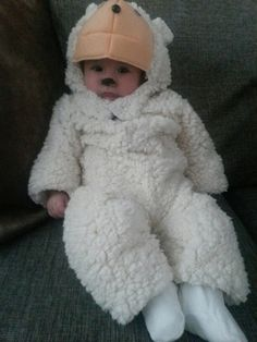 Little lamb for the nativity of baby Jesus