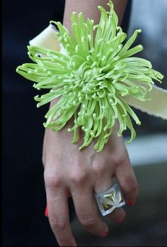 wrist corsage Jennifer Mullin formal parties (I missed my prom. Asian Flowers, Prom Flowers, Large Flowers, Wedding Flowers, Flower Corsage, Wrist Corsage, Prom Corsage, Flower Fashion, Floral Bouquets