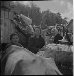 Finnish refugees/evacueted in summer 1944.Carelia, the eastest part of Finland was lost to Soviet Union and about 400000 people had to find a new place to settle down.