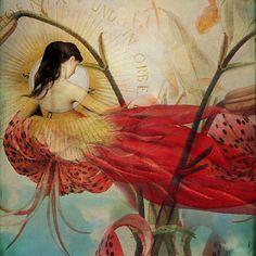 Catrin Welz-Stein: Lilies Wish