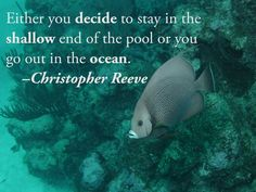 Either you decide to stay in the shallow end of the pool or you go out in the ocean. –Christopher Reeve
