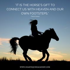 Horse Quotes - It is the horse's gift to connect us with heaven and our own footsteps.