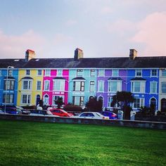 OUTSIDE and A HINT OF SPRING for day 18 and 22 of #myhousethismonth . This is a bit of a cheat really... here's a lovely, colourful row of houses along the promenade in our village, Llanfairfechan. . Our actual house is a wintery mess. The lawn needs cutting, the front door needs a lick of paint and I accidentally had a massive pruning session a few weeks ago. Bye, bye humongous honeysuckle, hello 5 sacks of garden waste! . . . . #northwales #promenade #wales #seaside #home #colourful…