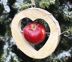 Tipps für grüne Weihnachten.