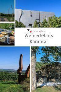 Wine Tourism, Austria Travel, Plants, Wanderlust, Landscape Pictures, Tourism, Road Trip Destinations, Travel Advice, Plant