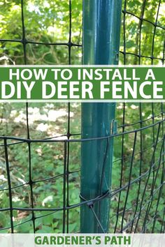 Excellent Gardening Ideas On Your Utilized Espresso Grounds If Youre Sick Of Shaking Your Head When You Look At The Damage Deer Do To Your Hostas, Roses, And Fruit Trees, You Arent Alone. Introducing A Deer Fence Is The Best Option To Keep Those Voracious Deer Garden, Diy Garden Fence, Garden Bed, Garden Tips, Indoor Garden, Homestead Survival, Survival Prepping, Survival Skills, Deer Resistant Garden