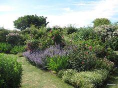 Le Jardin de Morailles et sa collection de roses anciennes, � visiter � Pithiviers le Vieil dans le Loiret...