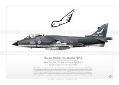 Sea Harrier FRS.1  XZ451 JP-463