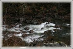 Along the Wilson River Road - Rapids in the water