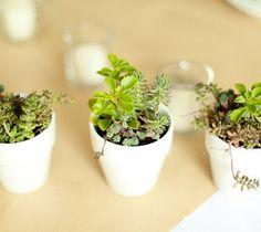 wedding favors... paint the pots