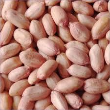 12 Best Where to buy Bitter Kola Nut images in 2014