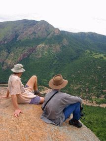 A one-hour drive south of Mbabane through the fertile and beautiful Malkerns Valley to Mankayane, one of Swaziland's oldest towns, takes adventure seekers to one of the most ruggedly beautiful areas of Swaziland. Adventure Activities, Hiking Trails, Outdoor Activities, Old Town, Walks, Scenery, Wildlife, Southern, Track