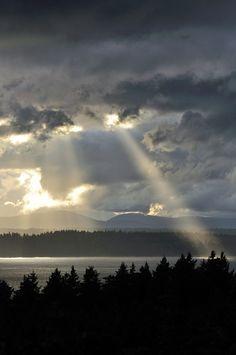 West Seattle Blog (westseattleblog) on Pinterest