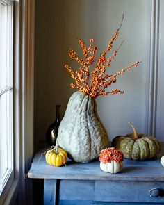 Use the season's harvest for one-of-a-kind vases. When paired with beautiful bright blooms, these squashes and pumpkins — in lumpy, bumpy texture and odd shapes — add character to your table.