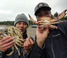 The 6th episode will be up tomorrow!! So many amazing things happened while filming I can confidently say that this is my favorite of all the episodes we have made so far! Stay tuned!! #brown_life_ #fishing #filmmaking #ocean #oregon #crab #crabbing #snare #squid #bait #rockcrab #dungenesscrab #waves #seal #babyseal #babycrab #sand #oceanfishing
