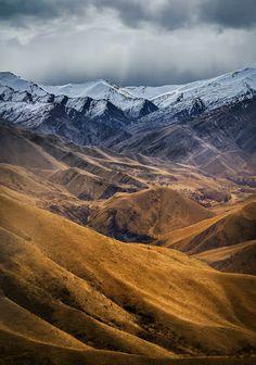 New Zealand Google+