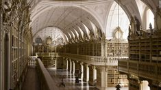 les plus belles bibliotheques du monde mafra   Les plus belles bibliothèques du monde   record du monde livre bibliotheque beaute beau