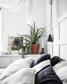 Home | Bedroom | Green plants | Cozy | Decor | More on Fashionchick.nl