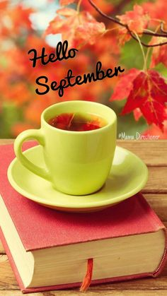 Hello September 🍁🍂 uploaded by on We Heart It September Art, Hello September, September Quotes, Happy Birthday Wishes Cards, Happy Birthday Images, New Month Wishes, Hello Quotes, Tea And Books, Good Morning Coffee