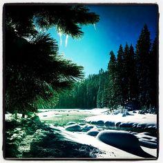 #tahoe#truckeeriver#snowshoeing - @marzeedotes- #instagram