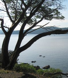 Off the coast of Washington State...Orcas Island is once place I would love to go back and visit...peaceful and beautiful