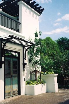 Pergola Bois Persienne - Pergola Inspiration - Outdoor Pergola With Vines - Pergola Aluminium, Metal Pergola, Cheap Pergola, Outdoor Pergola, Backyard Pergola, Pergola Shade, Garage Pergola, Modern Pergola, Pergola On The Roof