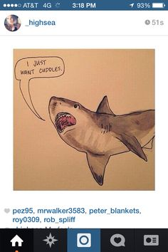 shark in different languages