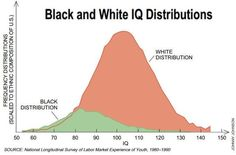 Black and White IQ distribution