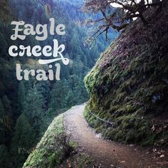 Wildflowers & Whiskey: Climbing the Eagle Creek Path. >>> Look into even more at the photo