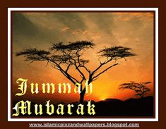 Islamic Pictures and Wallpapers: jumma mubarak wallpapers Juma Mubarak Pictures, Jumma Mubarak, Prayer Quotes, Islamic Pictures, Holi, Worship, Prayers, Wallpapers, Poster