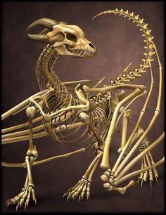 Dragon calavera