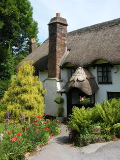 pagewoman: Thatched Cottage, Torbay, Devon, England (by Mark A Coleman)