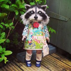 Blacked Eyed And Bashful Raccoon Girl