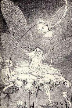 Dorothy P Lathrop Fairy