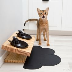 Did you know cats are natural crouch eaters and prefer eating from an elevated position? Our elevated dining tables are designed to prevent whisker and stomach stress for your favorite feline as well as provide a more modern look to your home. Simple, sophisticated, modern. www.vivipet.com