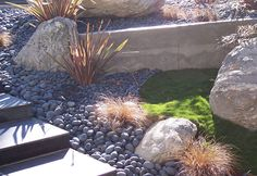 Mexican Beach Pebbles in landscape. Rock Garden Design, Yard Design, Landscaping With Rocks, Front Yard Landscaping, Mid Century Landscaping, Soil And Water Conservation, Decorative Aggregates, Mexican Beach Pebbles, Green Garden