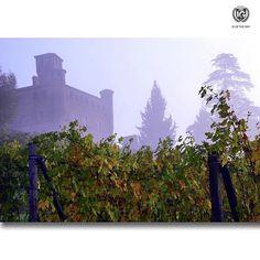 presents  I G  O F  T H E  D A Y  P H O T O | @tre3stelle L O C A T I O N | Grinzane Cavour Castle in Autumn Vineyards F R O M | @ig_cuneo_ A D M I N | @berenguez M O D E R A T O R | @sarasbre S E L E C T E D | our team F E A T U R E D  T A G | #ig_cuneo_ #ig_cuneo #langhe M A I L | igworldclub@gmail.com S O C I A L | Facebook  Twitter  L O C A L  S O C I A L | http://ift.tt/1PoRtlj  http://ift.tt/1E9QCiB  http://ift.tt/1Qng2g6  M E M B E R S | @igworldclub_officialaccount F O L L O W…