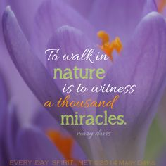 To walk in nature is to witness a thousand miracles. [Mary Davis]