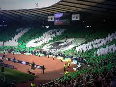 Ultras Football, Celtic Fc, European Football, Glasgow, Club, Futbol, Bears, European Soccer