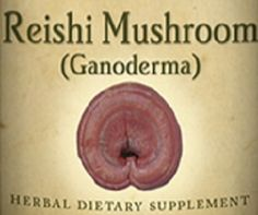 REISHI MUSHROOM Tincture Tonic for Immune & Respiratory Systems Anti-Inflammatory Heart Blood Flow Supplement Traditional Herb Health USA