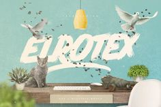 Elrotex Brush Font + Bonus by Maulana Creative on Creative Market