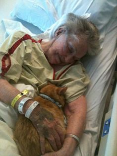 This has to be the sweetest most precious picture on the planet. This picture was posted by a user on Reddit. His grandmother was in a hospital dying, and the hospital made an exception and allowed the family to bring her cat in for a visit and it made a world of difference for the dying woman. I think it's pretty obvious how happy both of them are to see each other. Brings tears to my eyes.