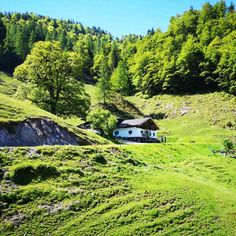 Bacheralm in Kirchdorf in Tirol – Bild des Monats im Juni 2019 Wilder Kaiser, Juni, Kirchen, Mountains, Nature, Travel, Landscape, Creative, Pictures