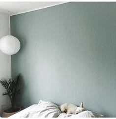 Billedresultat for mint tea flugger (color for small LR wall) Bedroom Green, Small Room Bedroom, Home Bedroom, Bedroom Wall, Bedroom Decor, Bedroom Mint, Green Wall Color, Wall Colors, House Colors